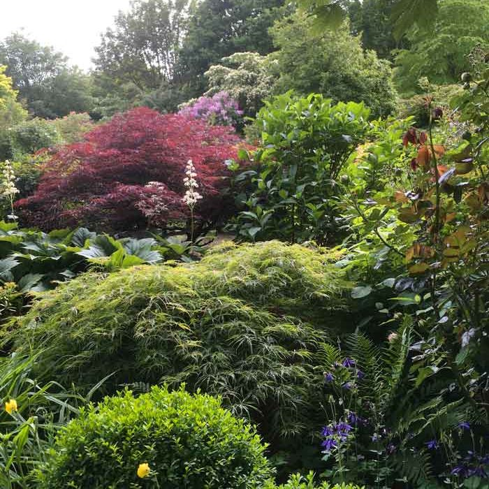 Vue du jardin du Mesnil à Monterolier nature