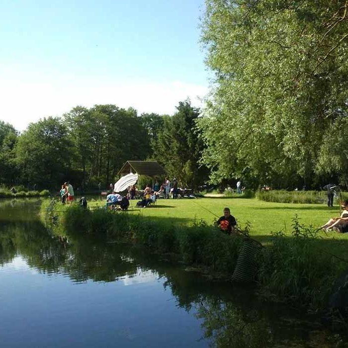 Vue de l'étang ensoleillé à la Pisciculture du Moulin à Elbeuf-sur-Andelle Loisirs