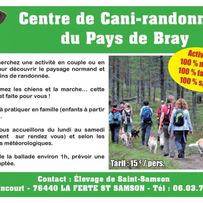 Flyer de Cani-rando à la Ferté saint-Samson - Balade et randonnée avec des chiens